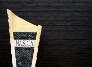 masica4-1100x590